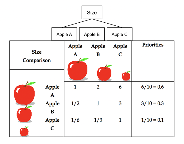 Figure 2.4  Pairwise Comparison Matrix for Apples Using Judgments