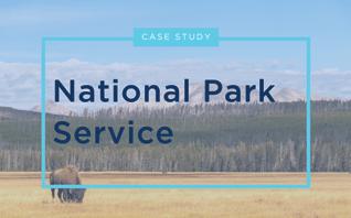 NPS Case Study